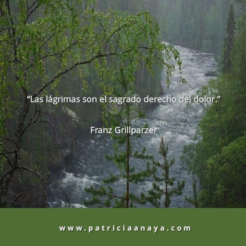 18-1016 Duelo-Muerte Lagrimas Franz Grillparzer