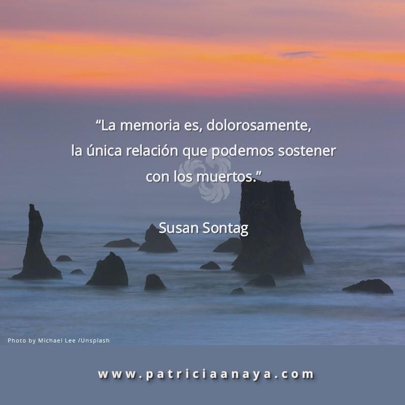 MEMORIA     Susan Sontag