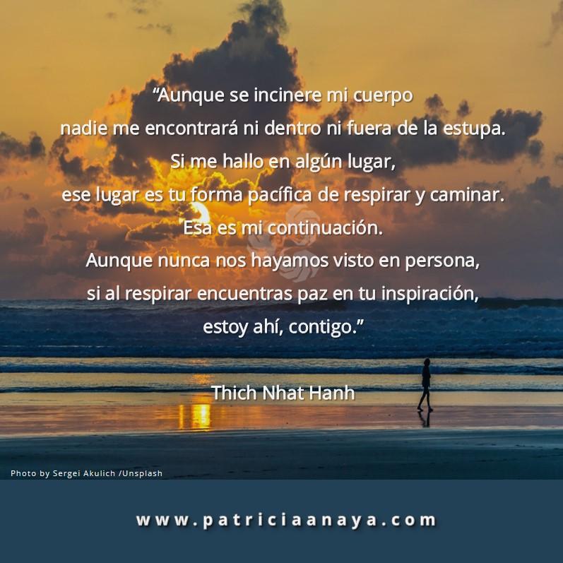 ESTOY AHÍ, CONTIGO  |  Thich Nhat Hanh